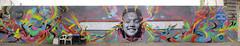 Stink fish + Nazza Stencil (plantilla) || Bs As 2014 (Col -Arg) (NAZZA STENCIL /////*) Tags: india wall stencil buenosaires mural congreso mapuche stinkfish plantilla arteurbano nativa nazzastencil colombiaargentina cinemigrante