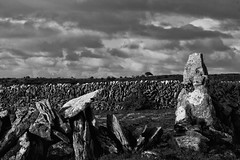 The Burren (eric laum) Tags:
