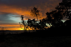 Magical Sunsets (kianpictures) Tags: blue sunset shadow sky orange sun color forest dark skies down mysterious setting