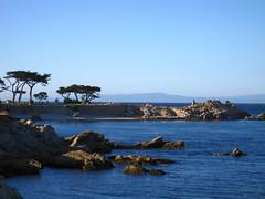 IMG_2387 (wNG555) Tags: california monterey carmel pebblebeach 17miledrive fishermanswharf carmelmission canneryrow 2014