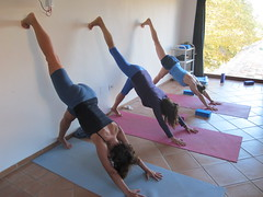 Eka Pada Adho Mukha Svanasana to wall (Scuola Yoga Camerino) Tags: wall eka adho mukha pada svanasana