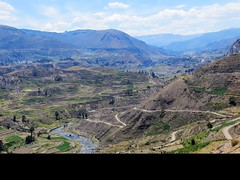 Colca Canyon-82