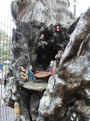 LONDON 1757 (RANCHO COCOA) Tags: wood uk england sculpture tree london garden elf trunk kensington carvings kensingtongarden sculpted elves elfinoak