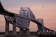 Flying over the bridge (mon_masa) Tags: bridge magichour