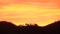 Tt ce matin ! (Le pot-ager) Tags: soleil matin leverdesoleil couleurdumatin