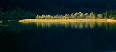 Sylvensteinsee (Claude@Munich) Tags: autumn light shadow lake reflection fall contrast germany dark bayern deutschland bavaria licht herbst oberbayern upperbavaria schatten spiegelung sylvenstein sylvensteinspeicher herbstfarben claudemunich sylvensteinstausee