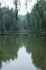 Autum (AngelikaBentin) Tags: china park see asien nebel herbst yangtze ufer fluss kalt wald garten dunst jiangyin ruhe