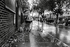 Novelty (The Green Hornet of Manchester) Tags: street uk england dog storm man bus wet face rain station weather kids umbrella manchester photography boards autum pavement hurricane bricks police windy gales novelty boardedup shelter society leafy chorlton ricoh gonzalo socialdocumentary 2014 pensioner gr2 disrution