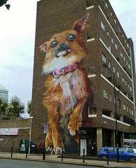 wacky chihuahua (helenoftheways) Tags: uk streetart chihuahua london dogs graffiti streetlamp wallart balconies chrispstreet ironyboe