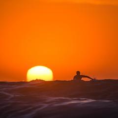 Racing the Sun (alexkess) Tags: orange sun beach water sunrise wanda surf sydney australia surfing nsw