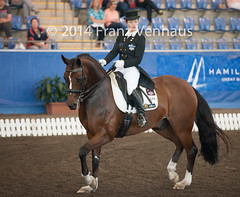 141025_2014_AUS_D_Champs_IntFS_5154.jpg (FranzVenhaus) Tags: horses performance sydney australia competition event nsw athletes aus equestrian riders dressage siec