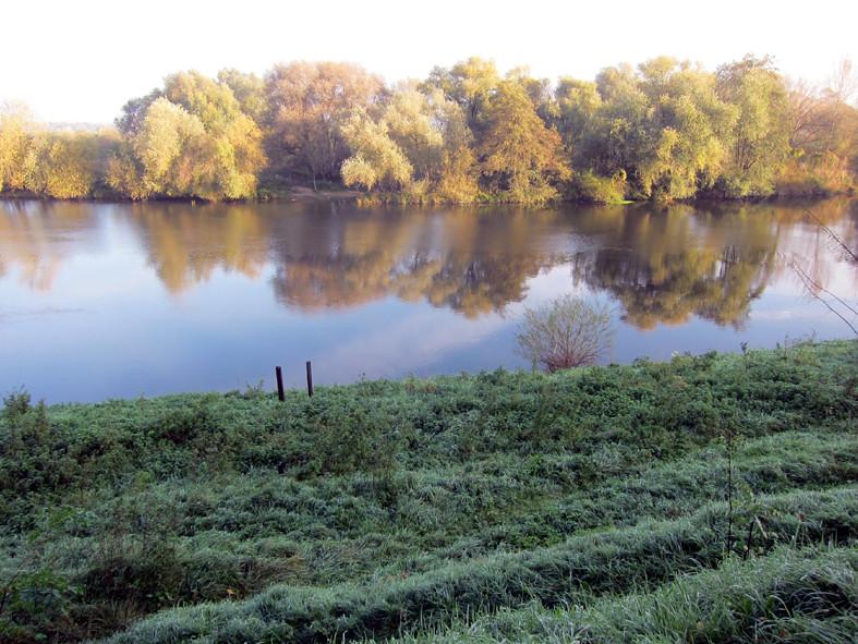 Linne, 28 oktober