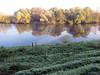 Linne, 28 oktober, Foto: Har Schuren (schuren.linne@wxs.nl)