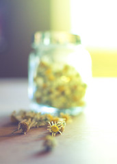 October 26, 2014 (Awen Photography) Tags: white flower glass yellow tea jar dried herb chamomile