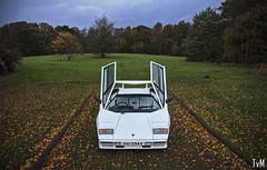 Lamborghini Countach (Thomas van Meijeren) Tags: