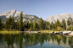 Grand Teton Nat'l Park (mooreattitude) Tags: wild mountain west nature america nationalpark wyoming teton grandteton