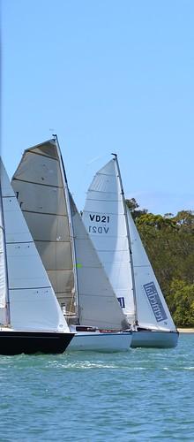 water sport river boat sailing yacht racing sail noosa