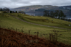 Loch Tay - March 2017 (GOR44Photographic@Gmail.com) Tags: loch tay sheep hills water scotland gor44 grass green cloud fujifilm xpro1 xf18mmf2