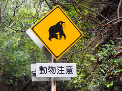 動物注意 : Attention aux animaux (emmrichard) Tags: animaux mammifères natureetpaysage paysages daim forêt panneau singe sousbois yakushima kyushu japon