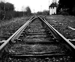Abandoned railroad (mkk707) Tags: blackwhite olympuse400 olympuszuikodigital25mm128 fourthirds vintagedigitalcamera ccd germany bokeh