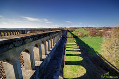 View from the top (Gavmonster) Tags: nikon nikond7000 d7000 gswphotography landscape clouds sky land viaduct balcombe sussex uk unitedkingdom arches train railway gradeiilisted grass bridge ousevalley london brighton blue green leadinglines westsussex fields shadow high lookingdown comb trees