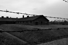 Αuschwitz (Sali_Boom) Tags: m auschwitz bikernau poland camp antinazi blakandwhite monochrome history