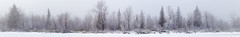 Bow River Island Winter Fog Panorama (asphotographics) Tags: topography riparian nature water frost panorama spruce trees plant groundcover cold tree riverbank alberta movingwater sky bowriver ice conifer sunrise winter season postprocessing asphotographics time outdoor timeofday riverchannel bodyofwater bowmontpark hoarfrost naturalfeature country fieldofview aspectratio river forest stitched landscape canada calgary ecosystem fog riverine