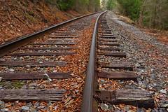 High Falls: Tracks (Shahid Durrani) Tags: high falls monongahela national forest cheat river west virginia