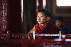 Mongolia-130803-601 (Kelly Cheng) Tags: amarbayasgalantmonastery asia buddhism centralasia mongolia boy ceremony child color colorful colour colourful culture heritage horizontal indoor monk people persons pray prayer red religion tourism travel traveldestinations vivid