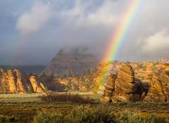 Oh Zion (xjblue) Tags: 2017 mtb stgeorge area desert race rampage redrock rockart trip scenic landscape utah southernutah zionnationalpark kolob rainbow clouds rain