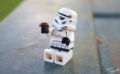"""Ladybug!"" (RagingPhotography) Tags: lego star wars stormtrooper outdoors outside nature amazement humor plastic minifigure minfig ragingphotography"