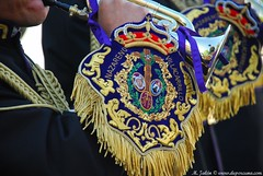 DSC_0092 (M. Jalón) Tags: borriquita semana santa porcuna domingo ramos procesión palmas 2017