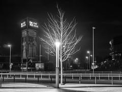 the light (Photo-Zombie) Tags: ewe oldenburg baskets black white blackwhite