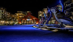 Sparrow  (2010 Olympic Village Plaza) (Christie : Colour & Light Collection) Tags: sparrow bird history vancouver falsecreek bc canada thebirds sculpture nightphotography night lighting 2010olympicvillage olympics craftbeer beer buildings windowns nightlighting cobblestone