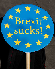 20176511 (sinister pictures) Tags: 2017 sinisterpictures gb greatbritain london uk unitedkingdom canon uniteforeurope nationalmarch parliament protest demonstration placards banners brexit article50 eu europeanunion euflag unionflag gbr hydeparkcorner