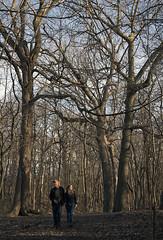 Birders in the Woods