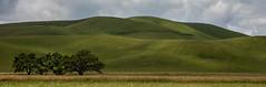 Livermore Hills, CA (JimBab) Tags: livermore hills ca california spring
