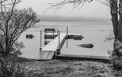 Bench On A Foggy Lake (John Kocijanski) Tags: hbm bench dock lake water fog sullivancounty canon24105mmf4l blackandwhite