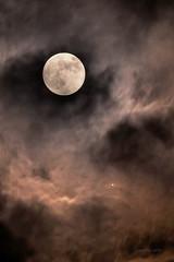 Jupiter in transit 2017-04-10 22:27:45 (uwhe-arts) Tags: moon transit nightsky xt10 xseries fujifilm fullmoon uwhearts sky nightshot astronomy astronomyevent jupiter