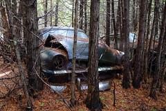 IMG_2761 (Irina Souiki) Tags: rusty crusty cars mcleansautowreckers milton ontario old oldcars