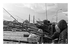 fishermen (alamond) Tags: fishermen galataköprüsü galatabridge yenicami newmosque mosque bridge turkey istanbul dark bw blackandwhite monochrome life canon 7d markii mkii llens ef 1740 f4 l usm alamond brane zalar