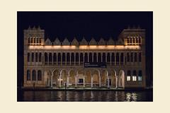 2_DSC2427 (Massimiliano Girotto) Tags: museo storia naturale venezia fontego dei turchi venice notte night italia italy