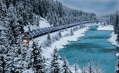 Oil Train Morants Curve (JB Bar) Tags: banffnationalpark bowriver facebook morantscurve oiltrain photoshopped lakelouise alberta canada ca
