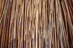 woodlandpark-5 (Pye42) Tags: seattle washington woodlandparkzoo texture thatchroof zoo zoomazium