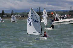 RAPHAËL 2 (yctahiti) Tags: nz napier national 2017 optimist
