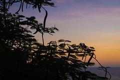 Puerto Escondito Beach sunset-2