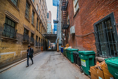 Back Alleys of Toronto (A Great Capture) Tags: ig agreatcapture agc wwwagreatcapturecom adjm ash2276 ashleylduffus ald mobilejay jamesmitchell toronto on ontario canada canadian photographer northamerica torontoexplore spring springtime printemps 2017 back alley urban explore garbage bins bin walking builings exploration architecture yongestreet collegestreet downtown city efs1018mm 10mm wideangle lane laneway