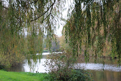 200 (AO'Brien) Tags: arklow autumn wicklow