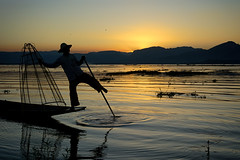 Fisherman silhouette (Feca Luca) Tags: street reportage backlight controluce sunset lake lago inle people fisherman fishing myanmar birmania asia nikon water