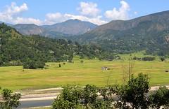 Valley of rice (Grey Albatross) Tags: nepal river rice valley himalayas annapurnasouth hiunchuli barahashikhar annapurna1 aadhikhola putalibazar